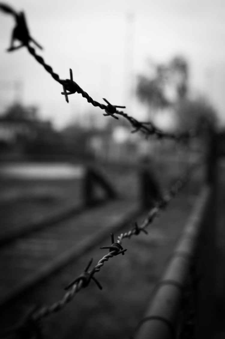black and white fence crime forbidden